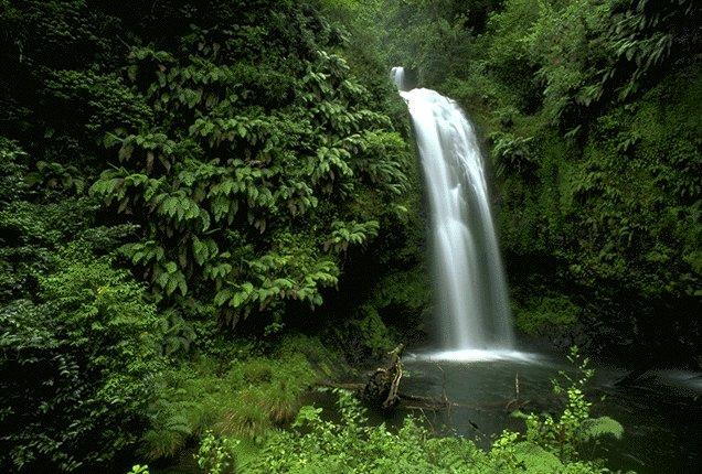 Back to balance rainforest massage for Rainwater falls massage